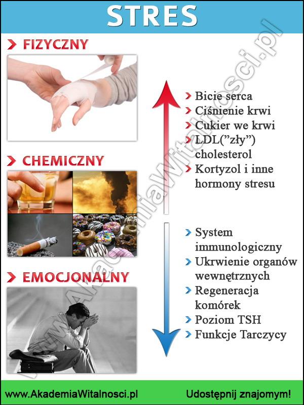 czynniki stresu