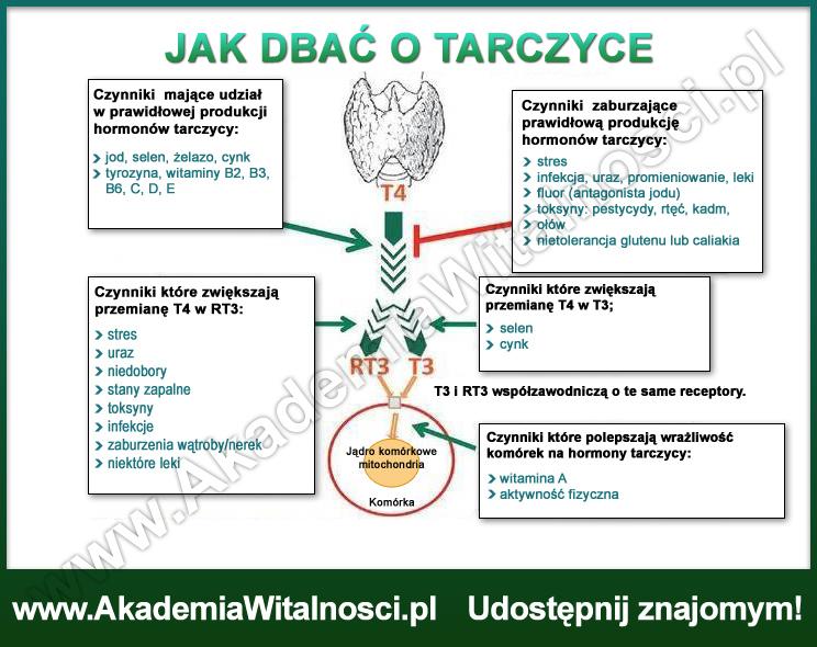 jak_dbac_o_tarczyce2