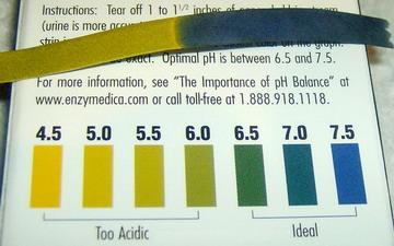 badanie pH
