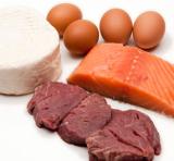 białko odzwierzęce