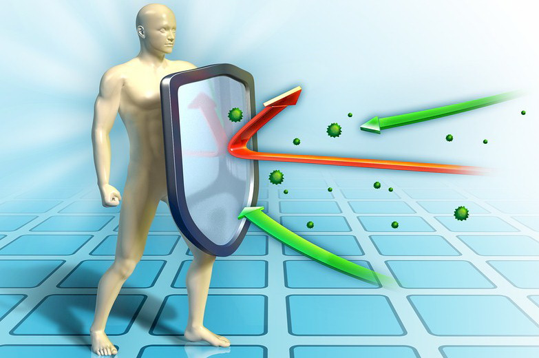 system immunologiczny